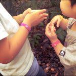 アロマオイル【シトロネラ】で手作り虫よけブレスレット。夏の虫対策。