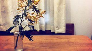 3月8日は女性の日。ミモザを飾って自虐はやめようと決心。